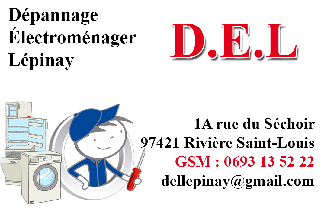 Dpannage Electromnager Lepinay